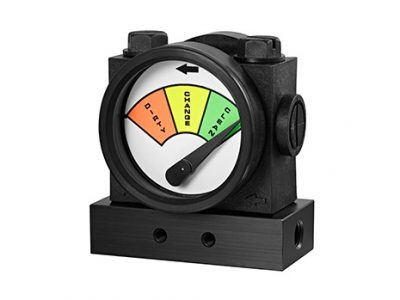 DPP975 The DPP975's simple modular design allows the gauge to accommodate many different options.